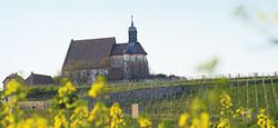 Maria im Weingarten bei Volkach