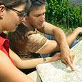 Wandern im Fränkischen Weinland